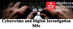 Cybercrime and Digital Investigation MSc
