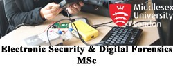 Electronic Security and Digital Forensics MSc